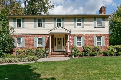 New Providence Boro Single Family Home For Sale: 15 Oldwood Drive