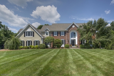 Bernards Twp. Single Family Home For Sale: 4 Owens Ct