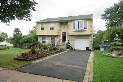 Piscataway Twp. Single Family Home For Sale: 16 Hidden Hollow Ct