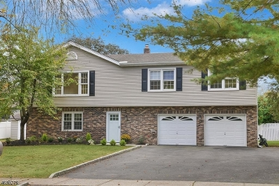 East Hanover Twp. Single Family Home For Sale: 178 Troy Rd