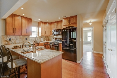 Scotch Plains Twp. Condo/Townhouse For Sale: 1003 Cellar Ave