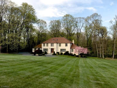 Bernardsville Boro Single Family Home For Sale: 67-2 Ballantine Road