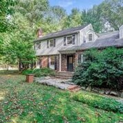 Parsippany-Troy Hills Twp. Single Family Home For Sale: 55 Hector Rd