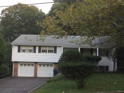 Mountainside Boro Single Family Home For Sale: 1591 Rising Way