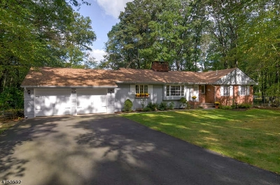 Parsippany Single Family Home For Sale: 4 Puddingstone Rd