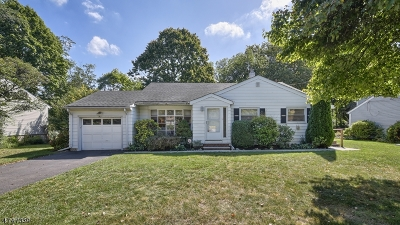Springfield Twp. Single Family Home For Sale: 5 Kemp Drive