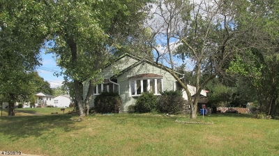 Piscataway Twp. Single Family Home For Sale: 401 Park Ave