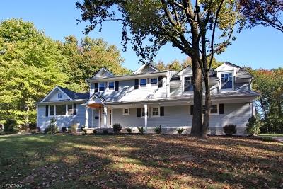 Scotch Plains Twp. Single Family Home For Sale: 2054 Winding Brook Way