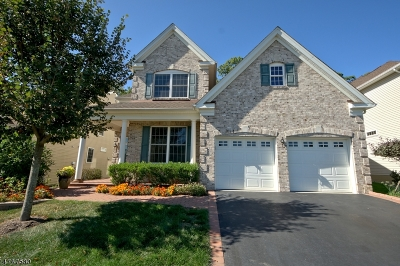 South Brunswick Twp. Single Family Home For Sale: 20 Edgemere Dr