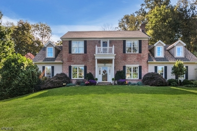Holland Twp. Single Family Home Active Under Contract: 136 Hawks Schoolhouse Rd