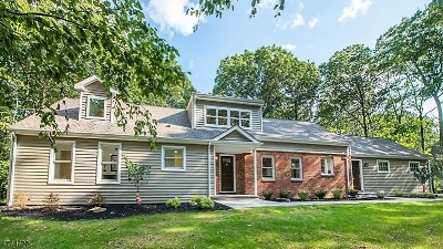 Parsippany-Troy Hills Twp. Single Family Home For Sale: 3 Puddingstone Rd