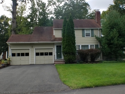 WESTFIELD Single Family Home For Sale: 17 Sunnywood Dr