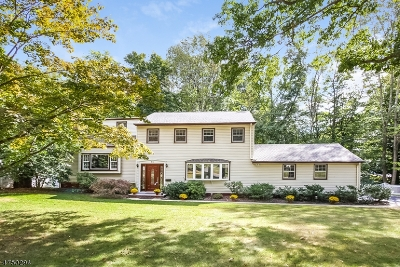 Berkeley Heights Single Family Home For Sale: 73 Whitney Drive