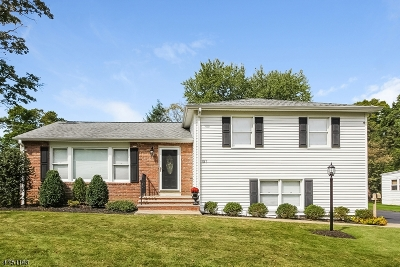 Morris Plains Boro Single Family Home For Sale: 127 Glenbrook Rd