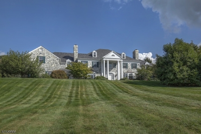 Bernardsville Boro NJ Single Family Home For Sale: $2,495,000