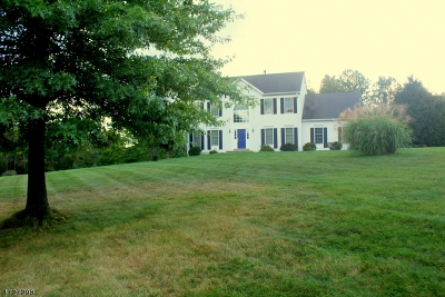 Holland Twp. Single Family Home For Sale: 1 Meadow Run Road