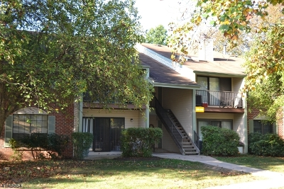 Bernards Twp. Condo/Townhouse For Sale: 137 Irving Pl #137