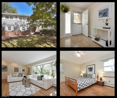 Chatham Twp. Single Family Home For Sale: 324 Southern Blvd