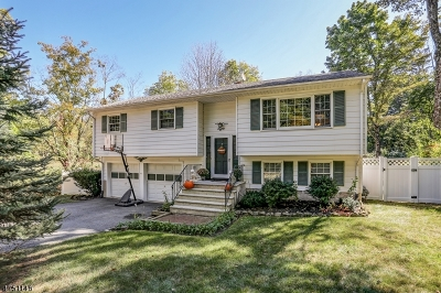Single Family Home Under Contract: 8 Hewlett Rd