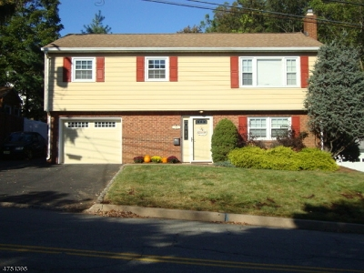 Boonton Town Single Family Home For Sale: 721 Wootton St