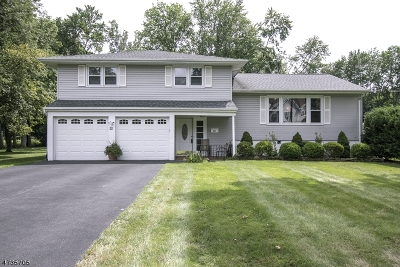 Livingston Twp. Single Family Home For Sale: 20 Country Club Rd