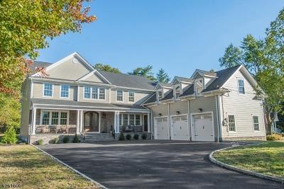 Livingston Twp. Single Family Home For Sale: 181 Walnut St