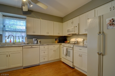 Springfield Twp. Condo/Townhouse For Sale: 577 S Springfield Ave