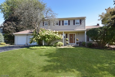 Parsippany Single Family Home For Sale: 16 Stafford Rd
