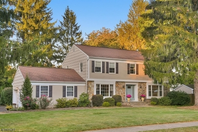 Randolph Twp. Single Family Home For Sale: 5 Allen Way