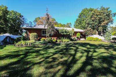 Edison Twp. Single Family Home For Sale: 134 Ethel Rd
