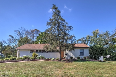 South Brunswick Twp. Single Family Home For Sale: 33 Kendall Rd