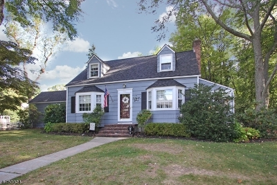 WESTFIELD Single Family Home For Sale: 501 Wells St
