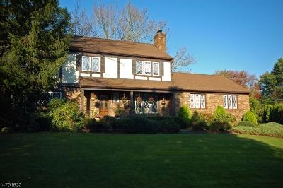 New Providence Boro Single Family Home For Sale: 19 Aspen Ct
