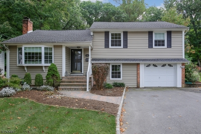 Scotch Plains Twp. Single Family Home For Sale: 1622 Ramapo Way