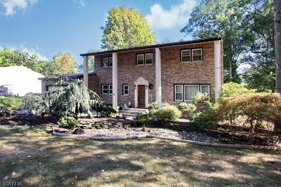 Parsippany-Troy Hills Twp. Single Family Home For Sale: 21 Westminster Dr
