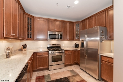Hanover Condo/Townhouse For Sale: 809 Brook Hollow Dr