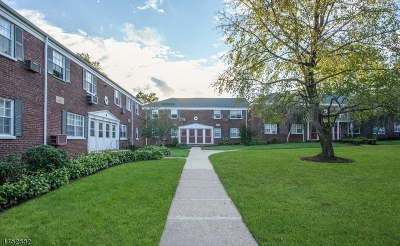 ROSELLE PARK Condo/Townhouse For Sale: 5a W Roselle Ave #A