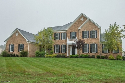 Mount Olive Twp. Single Family Home For Sale: 9 Marcin Way