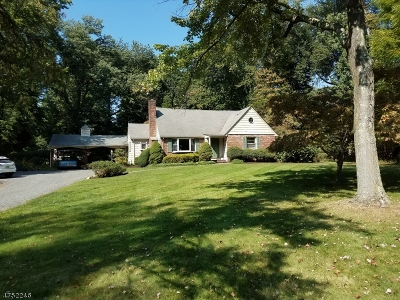 Scotch Plains Twp. Single Family Home For Sale: 1271 Raritan Rd