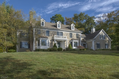 Bernards Twp. NJ Single Family Home For Sale: $1,849,000