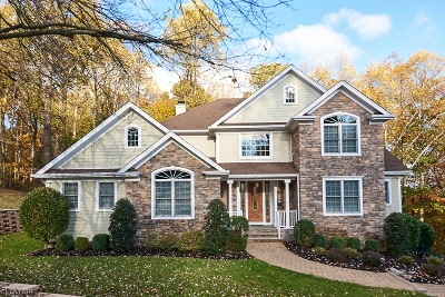 Springfield Twp. Single Family Home For Sale: 428 Rolling Rock Rd