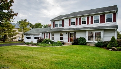 Roxbury Twp. Single Family Home For Sale: 11 Rivendell Rd