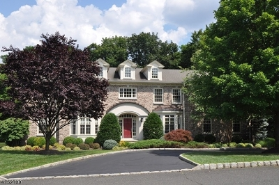 Chatham Twp. Single Family Home For Sale: 5 Sycamore Dr