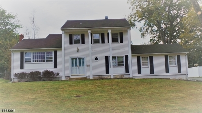 East Hanover Twp. Single Family Home For Sale: 14 Wildwood Ave