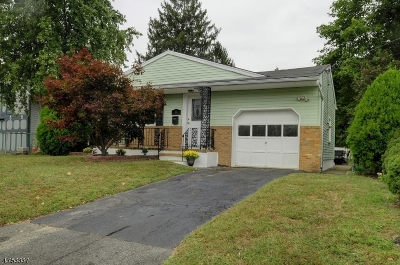 Piscataway Twp. NJ Single Family Home For Sale: $312,900