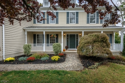 Bernards Twp. Single Family Home For Sale: 21 Paisley Ln