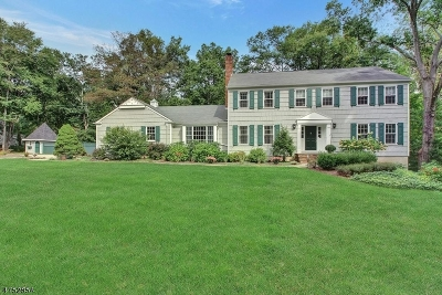 Bernards Twp. Single Family Home For Sale: 6 Brook Ridge Dr