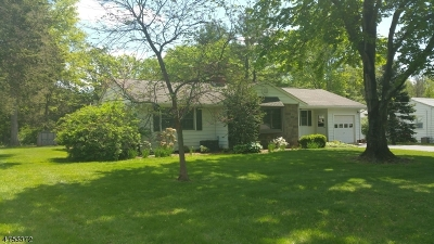 Bridgewater Twp. Single Family Home For Sale: 36 Somerset Ave