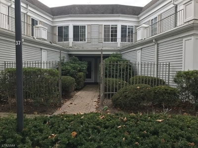 Chatham Twp. Condo/Townhouse For Sale: 309 Riveredge Dr