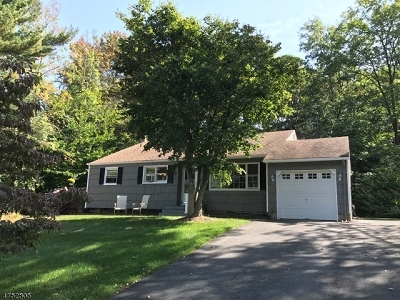 Randolph Twp. Single Family Home For Sale: 20 Sunset Dr
